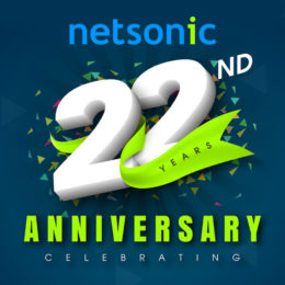 Netsonic's 22 year anniversary logo